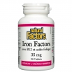 Natural Factors Iron factors (