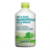 Land Art Chlorophylle lime-bas